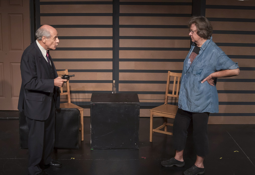 PROVENANCE by Ian Patrick Williams, featuring Susan Jones and David Meyersburg. Directed by Mike Lusk. Photo by Cliff Roles.